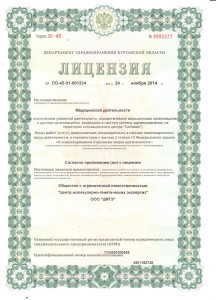 Лицензия лист 1