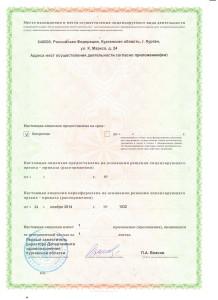 Лицензия лист 2
