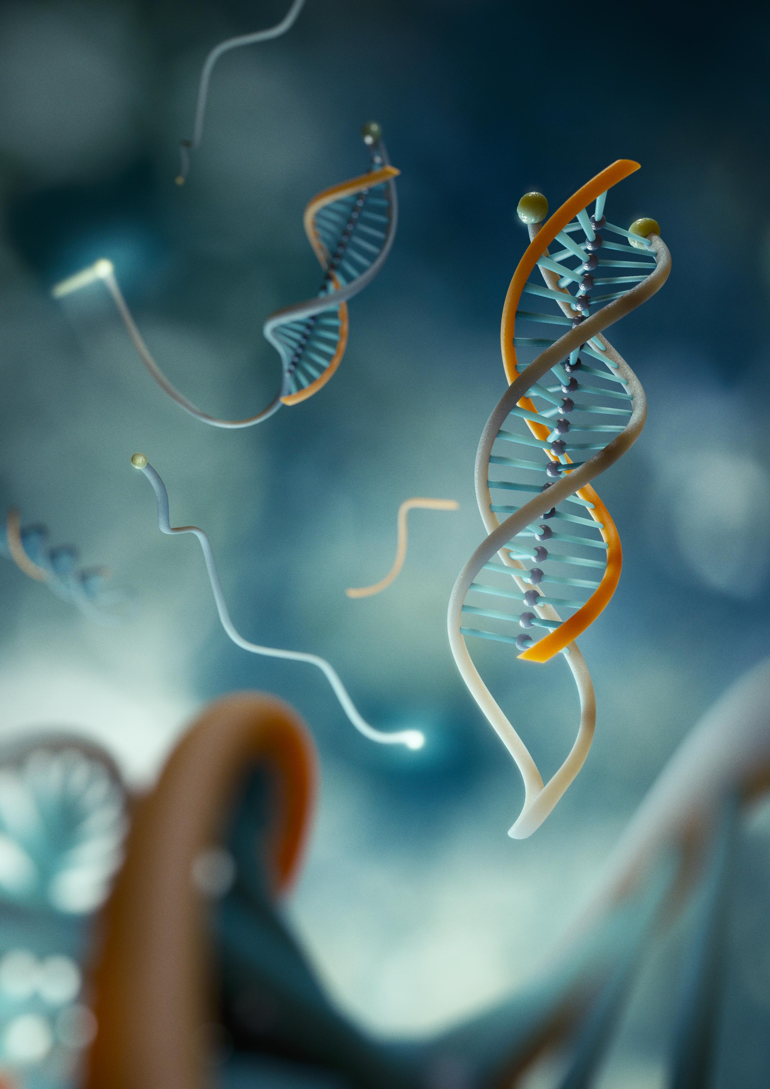 Тройная спираль ДНК