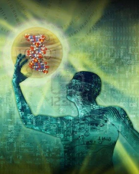 Ученые доказали: гены определяют личность человека больше, чем среда обитания