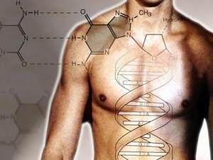 Геном человека