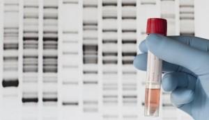 ДНК Тест 2