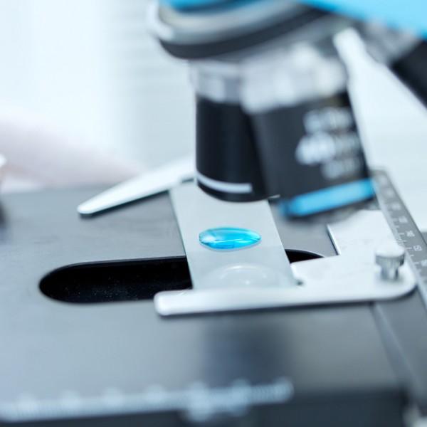 Тест ДНК на отцовство (частный/анонимный)