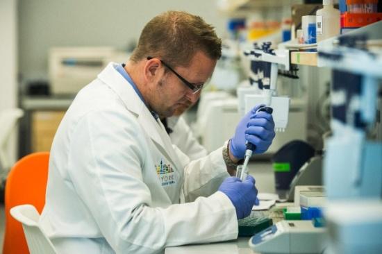 ДНК тест на отцовство в Краснодаре